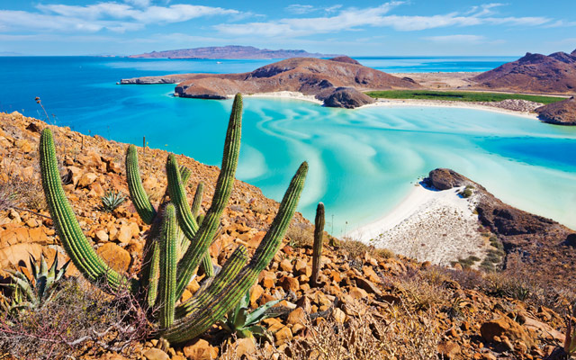 5-Day Wildness and Wellness Retreats in Baja California