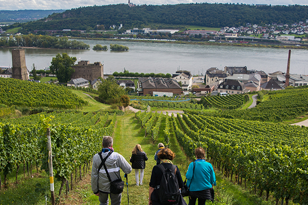 Active & Discovery on the Danube - Avalon Waterways